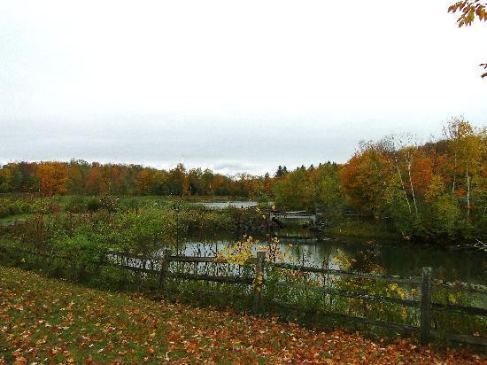 Twin Farms: Pond near Main House