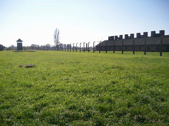 Krakow Tours: Birkenau - so emotional!!