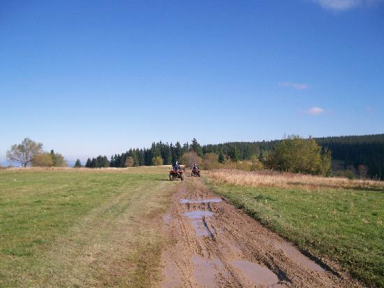 Zakopane, Polen: Us on the quad bikes, the flattest part of the trip.