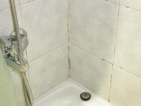 Hostal San Medin: Le mattonelle del bagno