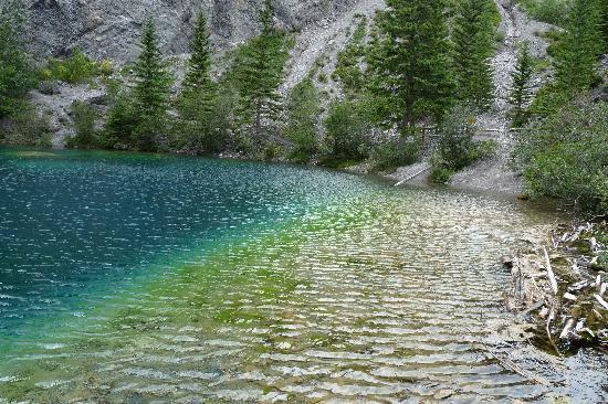 Grassi Lakes: Grassy Lakes