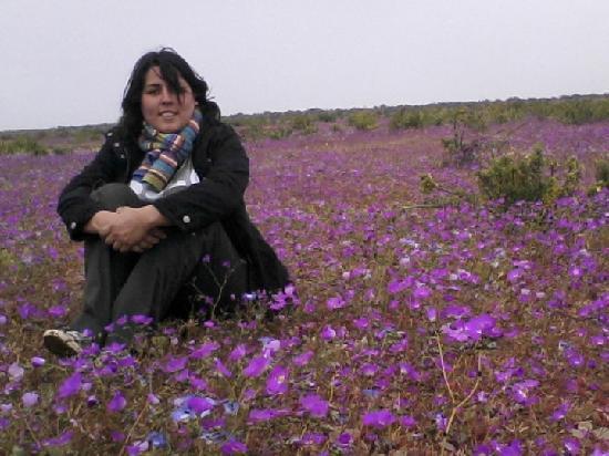 Hostal Pachamama : Viaje x el norte