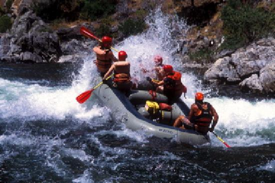 All-Outdoors California Whitewater Rafting - Day Trips: Tuolumne River
