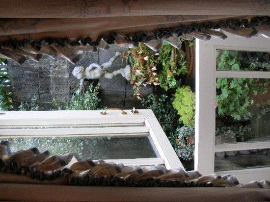 Queen Charlotte's Orangery : Sophia Room's bijou garden
