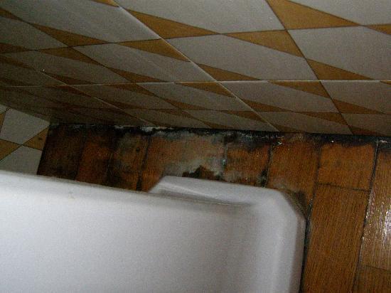 """Casa Astarita Bed and Breakfast : """"Moderna"""" -- mold behind the bathroom sink."""
