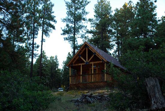 Lost Canyon Lake Lodge: Private Cabin
