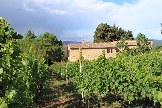 Agriturismo Fonte Martino 사진