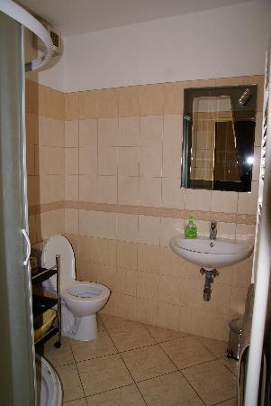 Apartments Blue Danube: bagno 1
