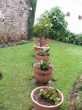 Mariana's Petit Hotel: Small garden