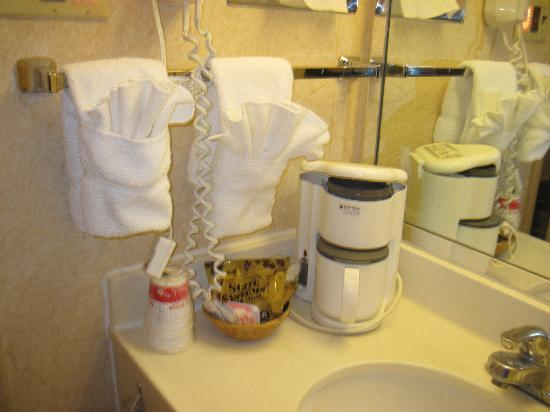 Ramada State College Hotel & Conference Center: Bathroom