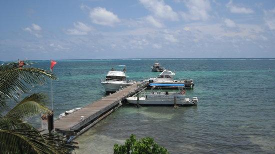 Ocean Frontiers: The OF fleet of dive boats