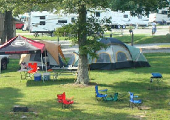 Pikeville, TN: Tent Site