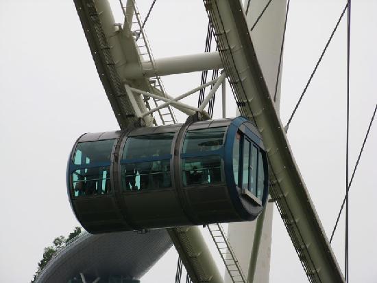 観覧車からの景色です - Picture of Singapore Flyer, Singapore ...