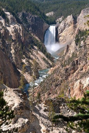 Canyon Village Campground: Yellowstone falls