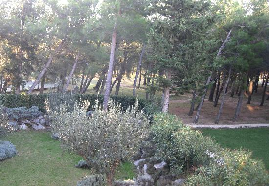 Starigrad-Paklenica, Kroatia: From our balcony