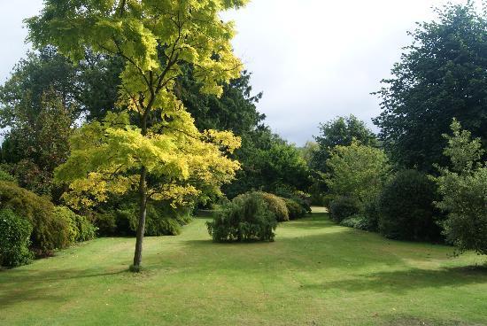 Gwern Borter Country Manor: Garden