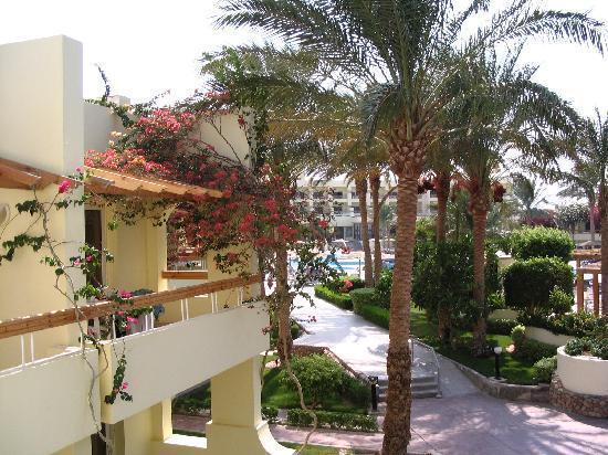 Palm Beach Resort: Villages