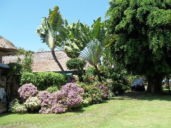 Laghawa Beach Inn: De tuin
