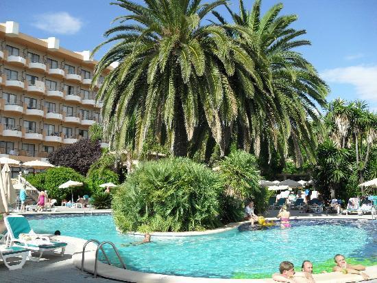 Hotel Riu Bravo: piscine. Plus petite qu'il n'y parait et eau glacée