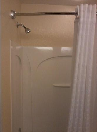 Best Western Wesley Chapel: Shower