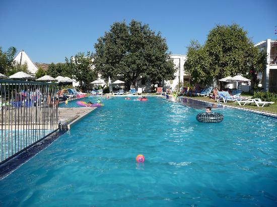 Muskebi Apartments: Swimming Pool