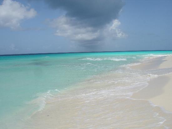 Isla El Gran Roque, Venezuela: spiagge stupende