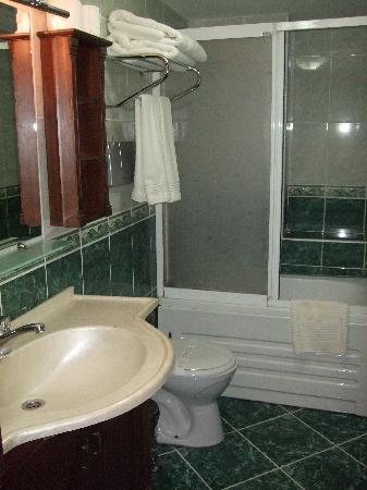 Assos Hotel Istanbul: De badkamer