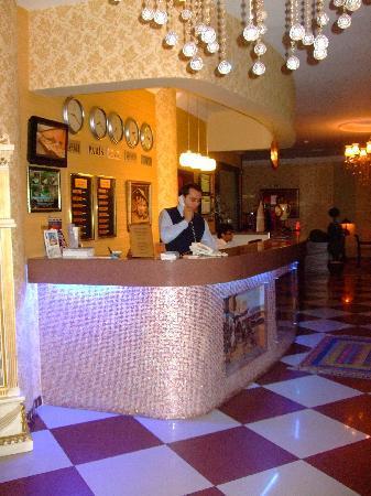 Assos Hotel Istanbul: De receptie