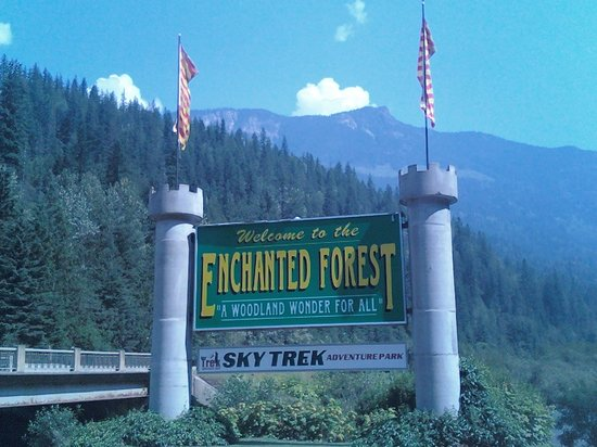 The Enchanted Forest: make sure to bring your inner-child!