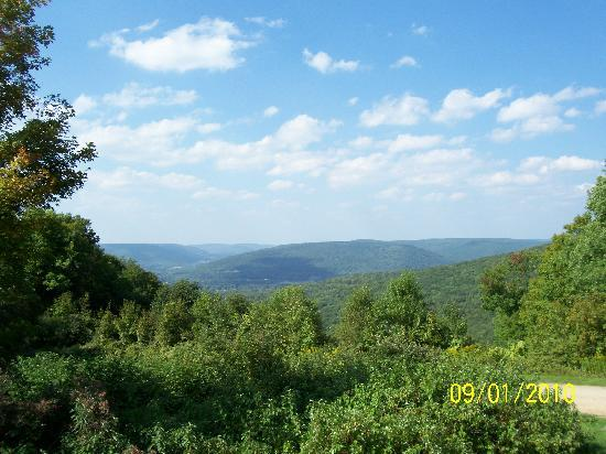 Allegany State Park: View from Stone Tower