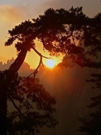 Mt. Huangshan (Yellow Mountain): Sunrise over Huangshan