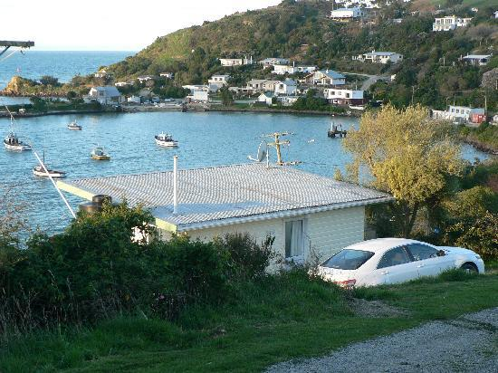 Moeraki Village Holiday Park : Cabin overlooking moeraki harbour