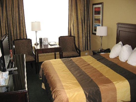 BEST WESTERN  Dorchester Hotel: A comfortable, cozy room