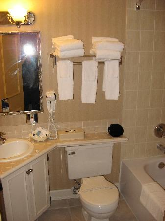 Best Western Dorchester Hotel: The bathroom