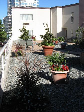 BEST WESTERN  Dorchester Hotel: A rooftop garden/patio