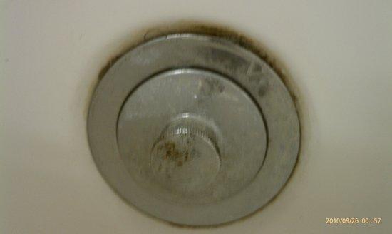 Microtel Inn & Suites by Wyndham Jacksonville Airport: Mildew in tub around drain