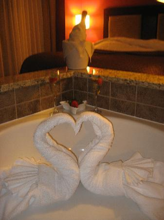 Holiday Inn St. Paul-I94-East (3M Area): Swans, Champagne and Strawberries!