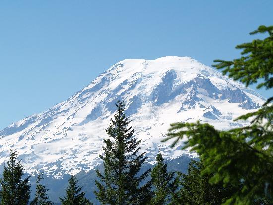 Mount Rainier : View Of Mt. Rainier