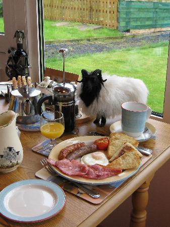 Dieskirt Farm: Hearty Irish breakfast