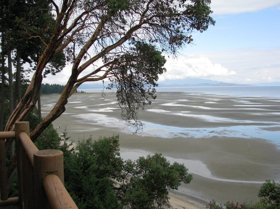 Tigh-Na-Mara Resort: View from balcony - tide out