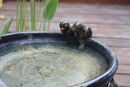 BaanBooLOo: Bird's bath...so cute