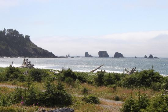 Quileute Oceanside Resort: View from balcony room 115
