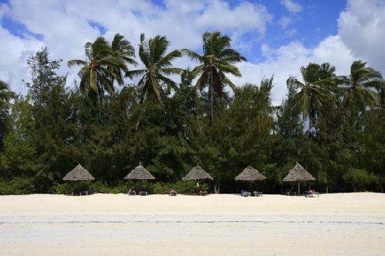 Sun and Seaview Bungalows: View on the private beach from the ocean