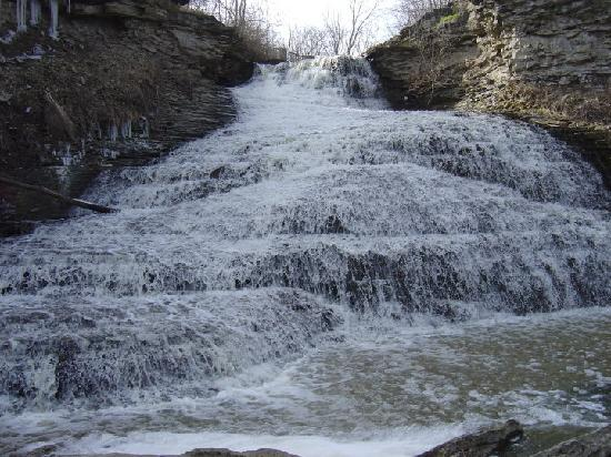 Waterfalls of Hamilton: beckers falls