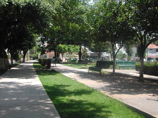 Dickinson Guest House: Beautiful and quiet neighborhood, with parks on either surrounding this area near Expo- Guadalaj