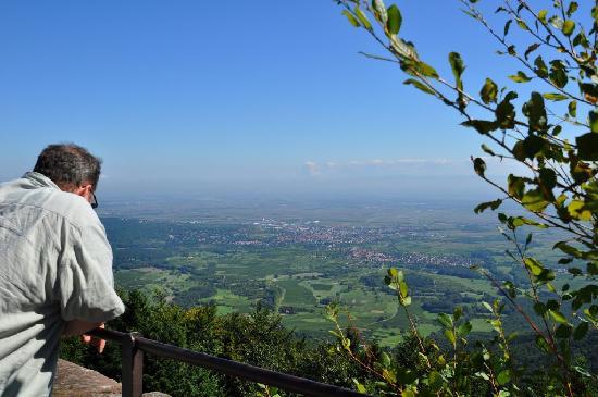 Couvent du mont Sainte-Odile : Aussicht