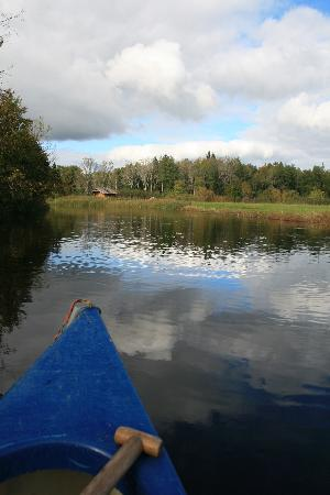 Wilderness Experiences in Soomaa National Park: Canoeing in Soomaa