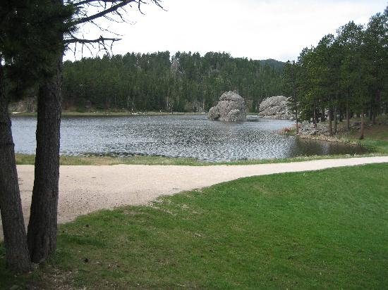 Rapid City, Dakota du Sud : In Custer State Park