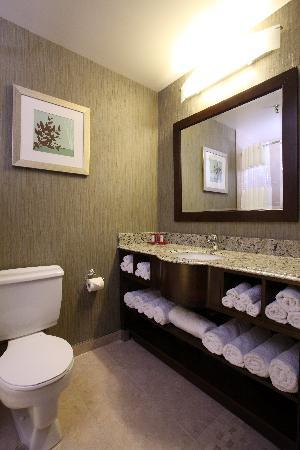 Ramada Saskatoon : Renovated washrooms with ganite