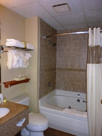 The Pointe at Castle Hill Resort: Efficient bathroom